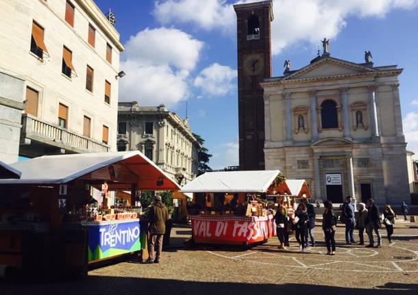 Il Trentino in piazza a Gallarate