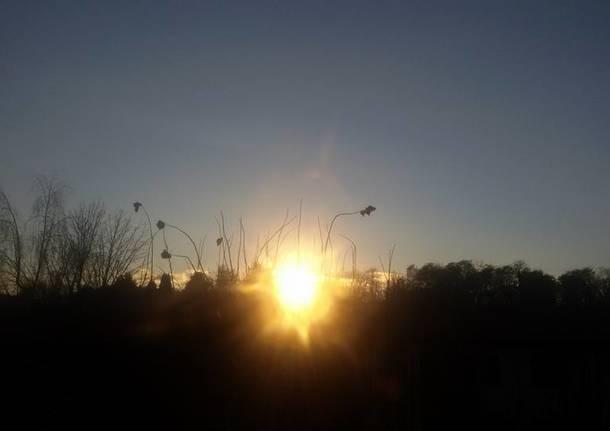 Bentornato sole (foto di Angela Boschiroli)