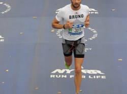 Le sette fatiche di Bruno Bonicalzi
