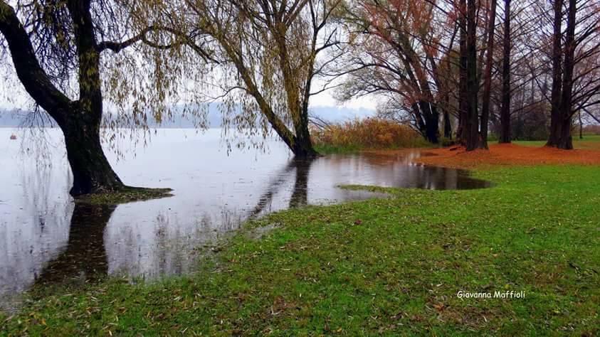 Il lago di Varese. Autunno alla Schiranna (foto di Giovanna Maffioli)