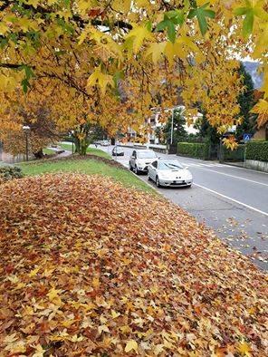 Magico autunno