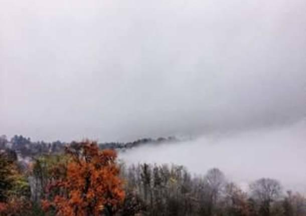 Nebbia in viale Europa
