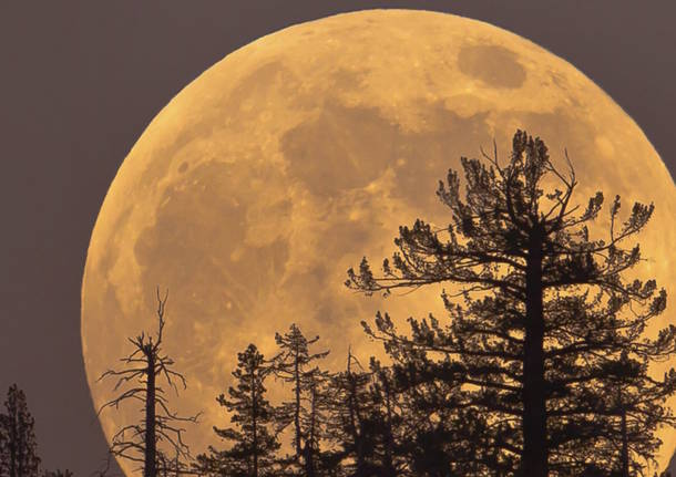 Arriva la super luna di novembre