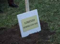 Un albero per Lorenzo