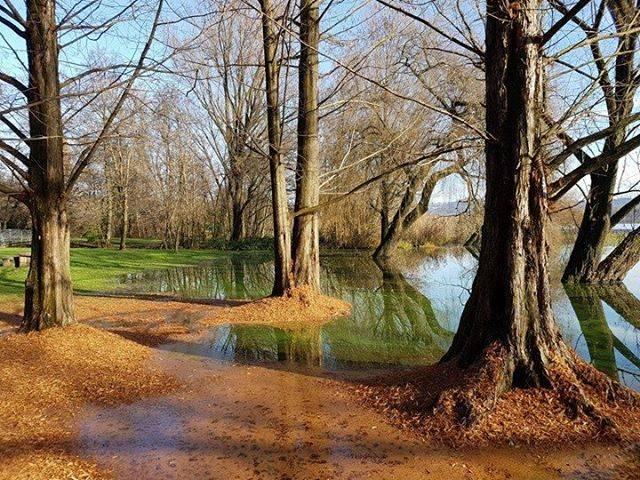Una giornata d'autunno alla Schiranna