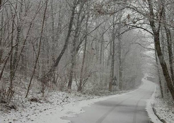 La (prima) neve dei lettori