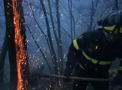 Brucia il bosco di Avigno