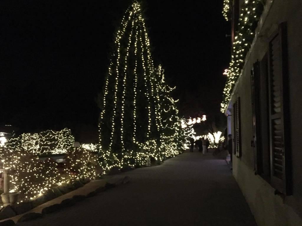 Case Di Montagna A Natale : La casa di natale nel bosco varesenews foto