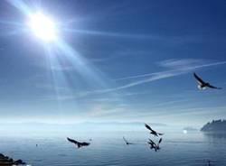 lungo lago di Diego Rabozzi