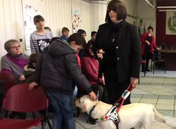Malnate - Giornata della disabilità 2016
