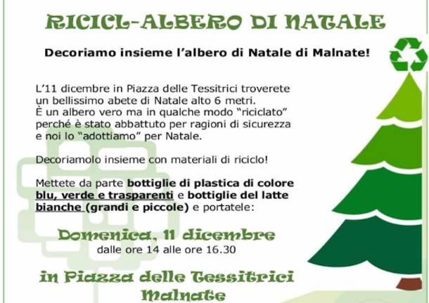 Albero Di Natale 6 Mt.A Malnate Arriva Il Ricicl Albero Di Natale