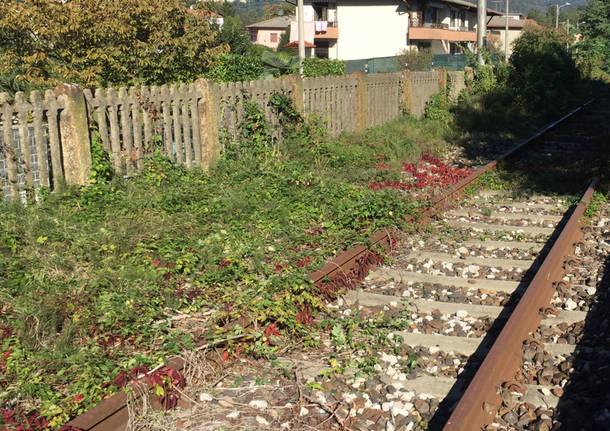 Bisuschio - stazione autunno 2016