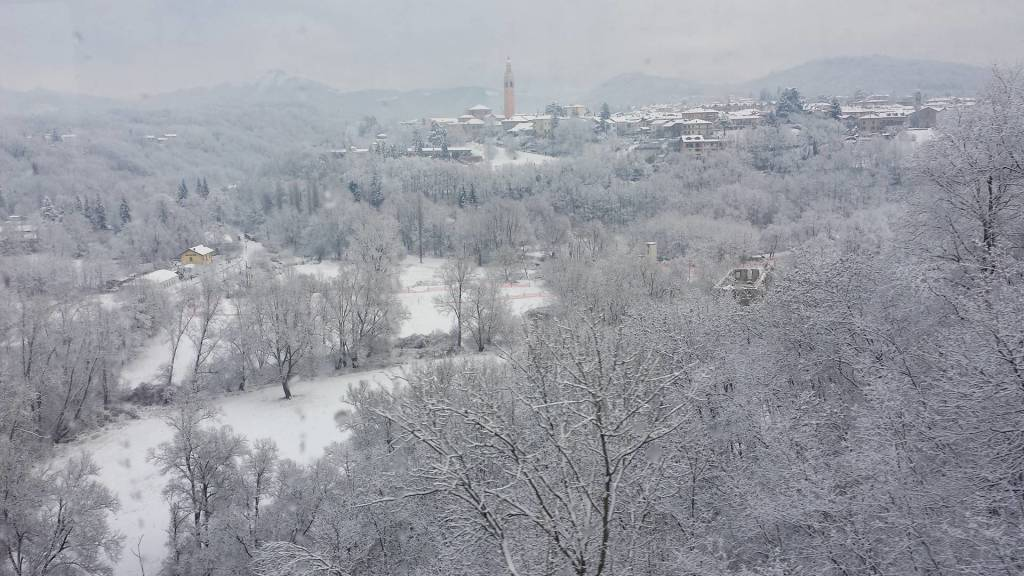 foto del giorno gennaio 2017