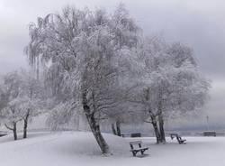 Germignaga nella neve