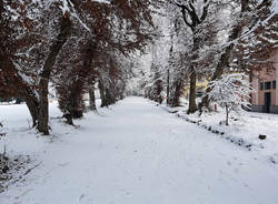 Neve a Taino