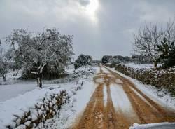 neve andrano salento gennaio 2017