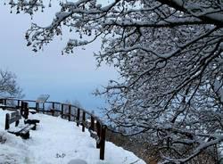 Campo dei Fiori, c'è ancora neve