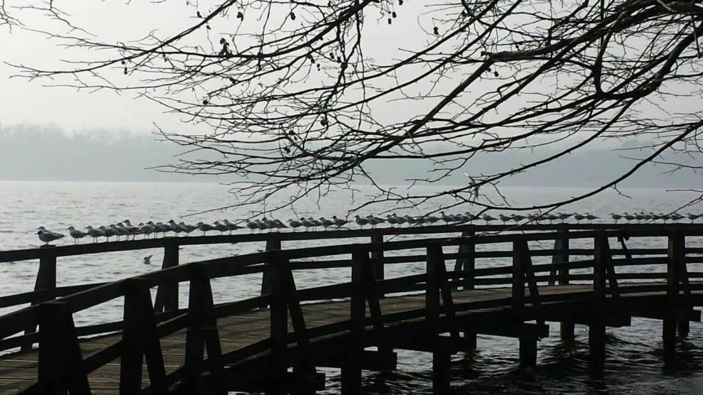 Un lago da guardare