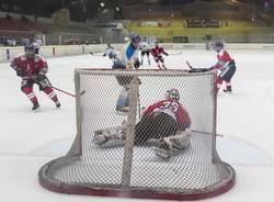 hockey su ghiaccio varese killer bees