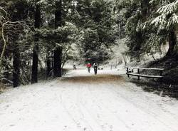 La prima neve di febbraio