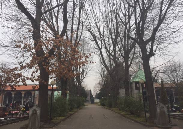 querce rosse cimitero castellanza