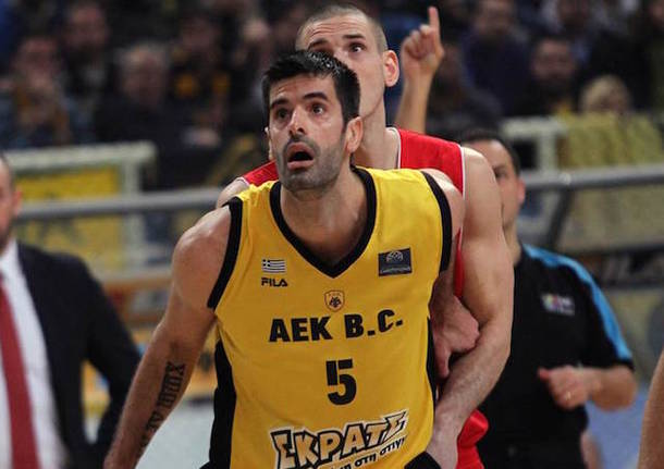 basket basketball champions league