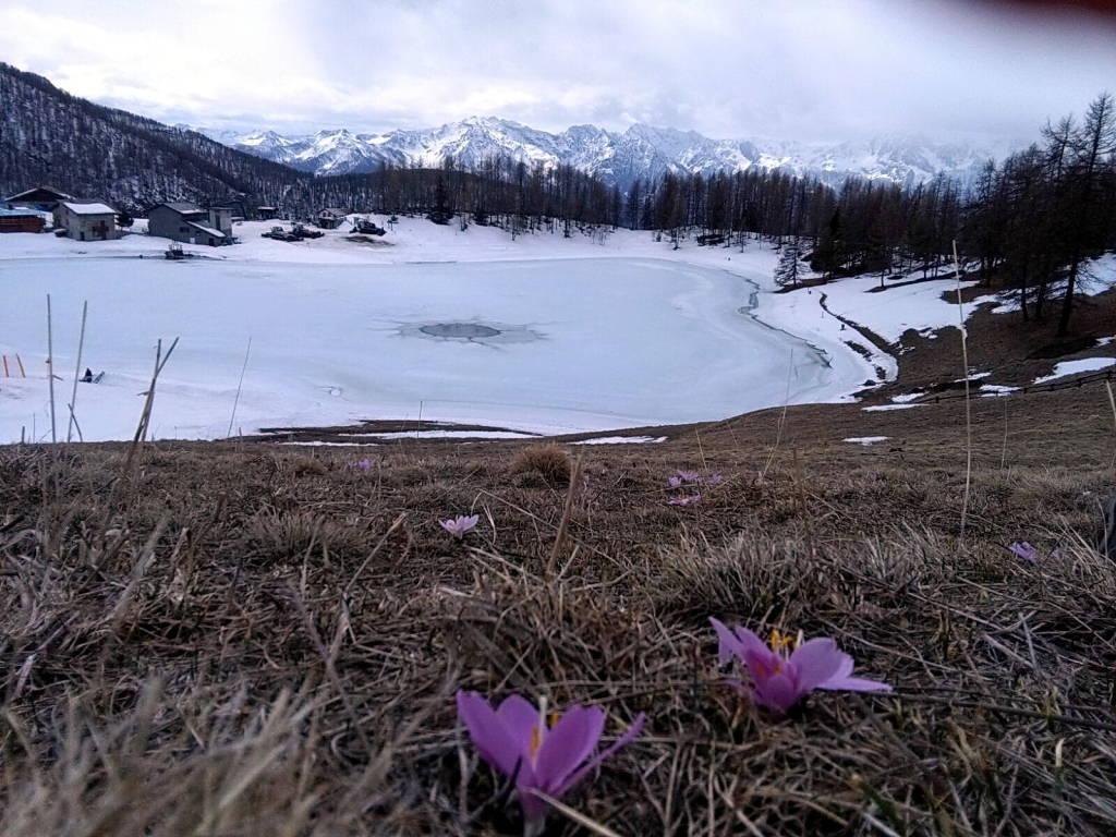 Rosanna in val d\'Aosta
