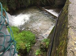 Idrocarburi a Gemonio nel torrente Viganella