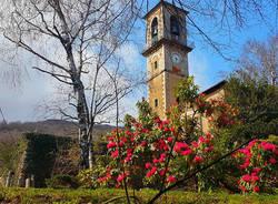 Primavera a Cuasso - foto di Clara Comolli