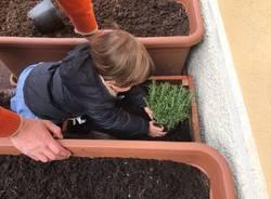 progetto orto scuola dell'infanzia