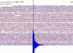 terremoto 6 marzo