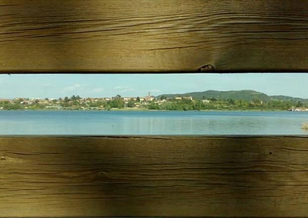 Il lago di Comabbio - foto di Barbara King