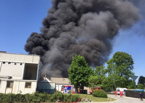 Incendio in zona Nizzolina, sul posto i vigili del fuoco