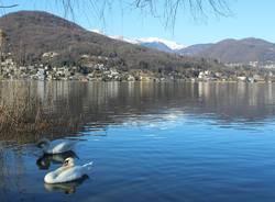 Lago Ceresio - foto di Laura Olivas