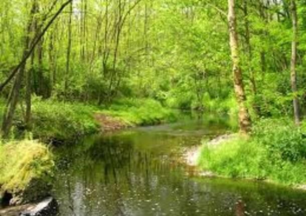 Parco Lura
