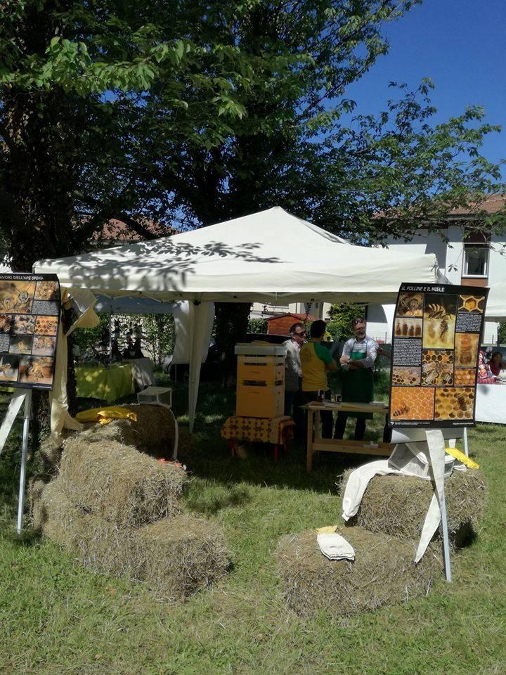 Agrifest 2017