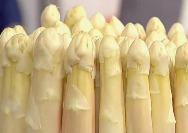 Cantello - Asparago bianco