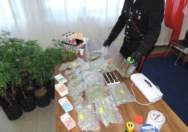 Trentamila euro in contanti e 3 chili di droga: arrestato pusher alla Cassina
