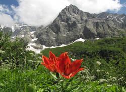 fiera sostenibilità alpina 2017