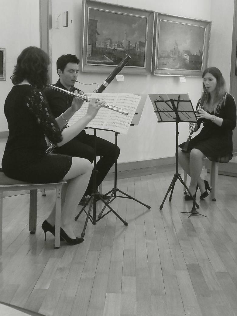 In concerto al museo Baroffio