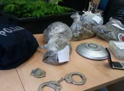 marijuana serra castano primo polizia
