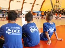 basket bcc