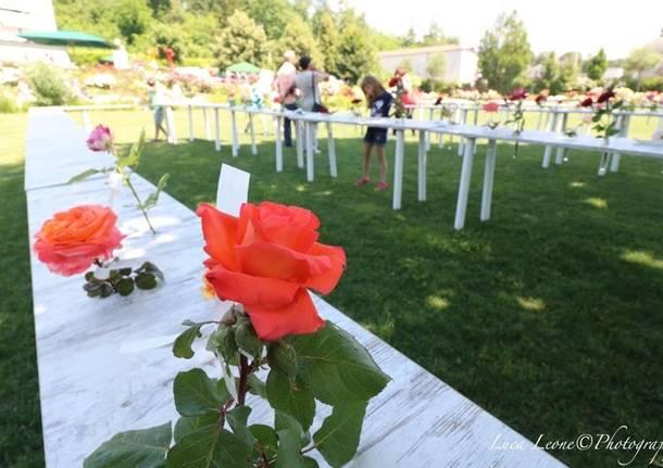 Induno Olona - Festa delle Rose 2017