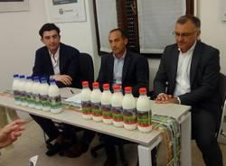 latte fantinato group