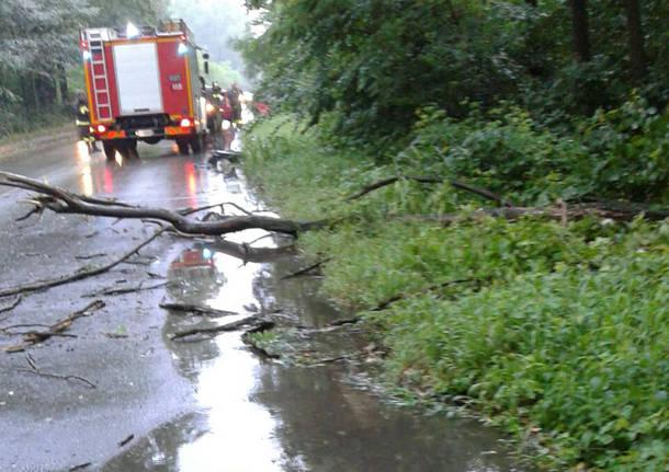 I danni dei temporali in provincia