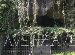 Avarie