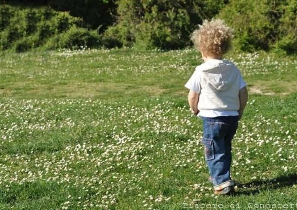 bambino parco natura
