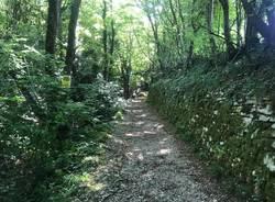 Tour monte san Giorgio: il quarto giorno