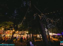woodo fest 2017