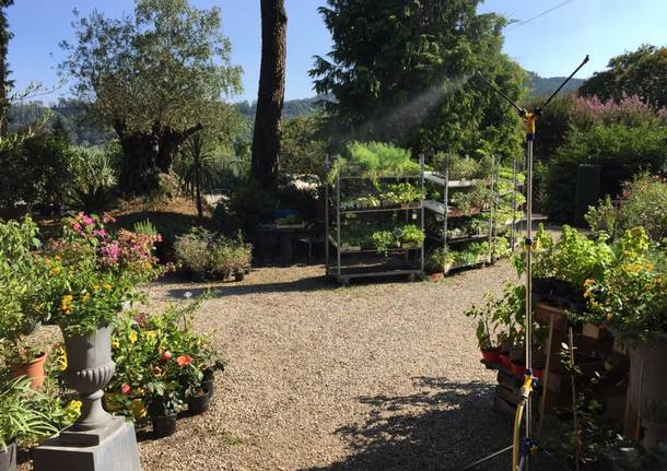 141Tour Laveno Mombello: i luoghi